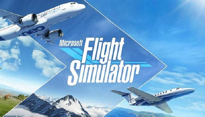 What makes a good Flight Simulator